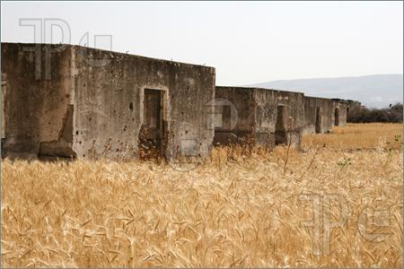 Ruined-Houses-Wheat-Field-805996