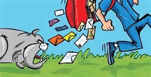 dog chases postman